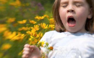 Аллергический ринит у ребёнка: причины, симптомы, лечение