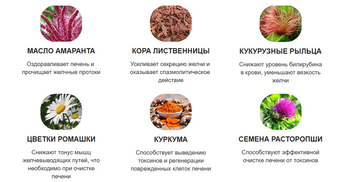 Состав Гепаклина