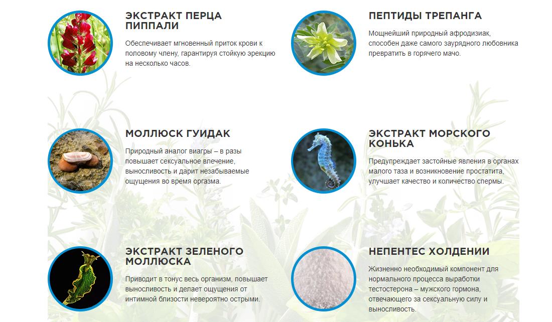 Состав таблеток Эрокапс