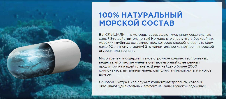 Состав капсул Экстра Сила